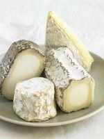 Substitutos queijo brie
