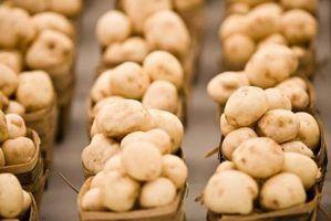 Como manter os cogumelos frescos na geladeira