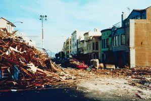 Causas e efeitos da gestão de desastres