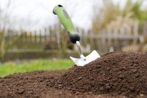 3 Principais tipos de solo