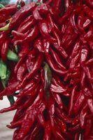 Tipos de pimenta chinês