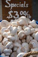 Cogumelos comestíveis comuns