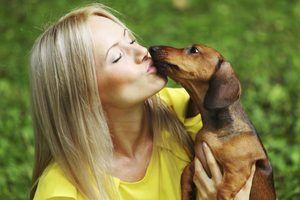 Linhas de cosméticos que não testar produtos em animais