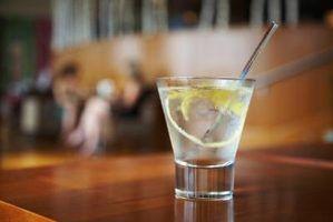 Diferentes tipos de gins