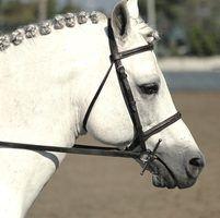 Diferentes estilos de cavalos trança
