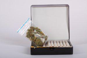 Porte de drogas e penalidades em maryland