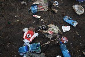 Fatos sobre o lixo para as crianças