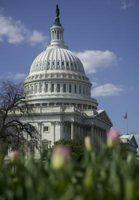 Regras federais de avaliação de desempenho da função pública