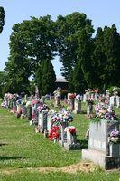 Leis da flórida sobre a morte sem vontade