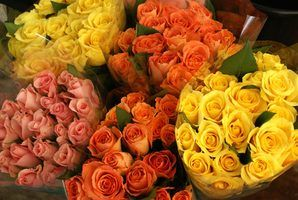 Flores para a mãe de um recém-nascido