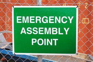 Nomear uma comissão de emergência para supervisionar situações de emergência.