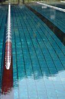 Ideias do presente para treinadores de natação