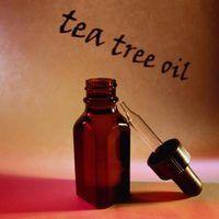 Grandes usos para o óleo da árvore do chá
