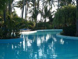 Cores piscina gunite