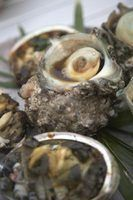 As diferenças entre os mariscos e ostras