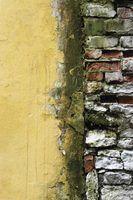 Moss mancha paredes de tijolo e torná-los olhar negligenciada.