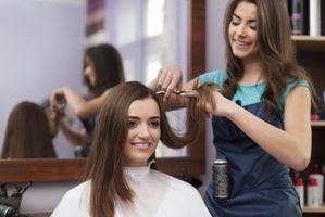 Quanto custa um cosmetologista faz por ano?