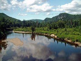 Como se tornar um oficial de conservação em Alberta