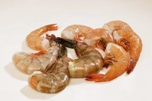 Como cozinhar baby camarão