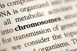 Glossários são úteis em uma tese, um livro de não-ficção ou outro documento formal.