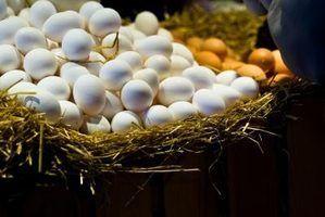 Como extrair o ácido hialurónico a partir de ovos