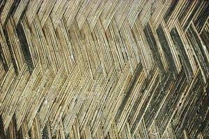 Como disparar bambu harden
