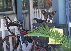 Como instalar uma cesta de bicicleta traseira