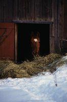 Como manter a água de um cavalo de congelamento sem eletricidade