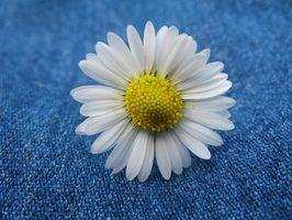 Como fazer flores de lona plástica