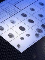Como enviar um cartão de impressão digital para o fbi para uma adopção