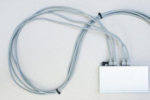 Uma sessão Telnet a um switch não é uma conexão segura.