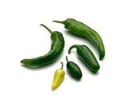 Como usar pimentas chipotle
