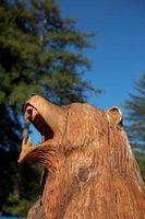 Idéias para esculpir tocos de árvores