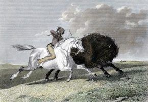 Formas indianas de domar cavalos