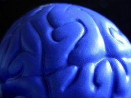 Os trabalhos que tratam de psicologia fisiológica e neurociência comportamental