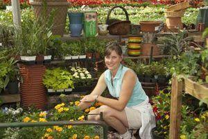Jobs com um grau horticultura