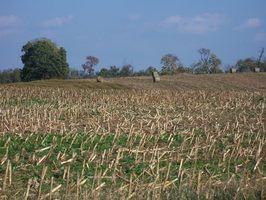 John Deere ajudou a revolucionar o sector agrícola.