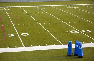 Faculdades juniores em michigan com times de futebol