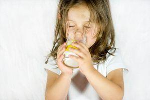 Lista de produtos substitutos lácteos