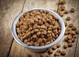 Lista de cães e gatos alimentos sem glúten