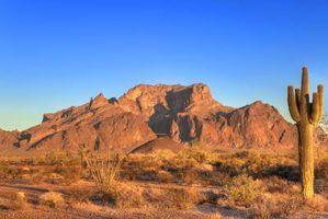 Lista de postos de trabalho no deserto