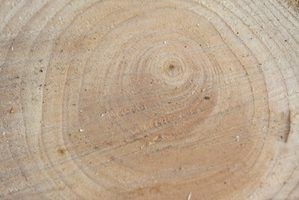 Lista de ferramentas de corte de madeira