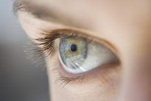 Liste as estruturas oculares que a luz passa através medida que se desloca a partir do exterior do corpo para a retina