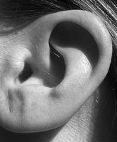 Ouvir atividades de compreensão para as crianças