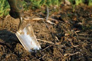 Vários easy-to-aquire ferramentas manuais fazer vala cavar uma brisa.