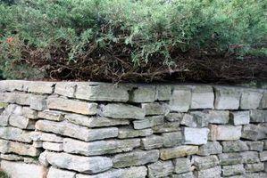 Materiais para barreiras para paisagismo