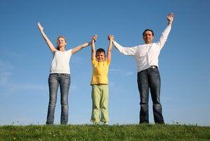 Leis de adoção passo-mãe michigan