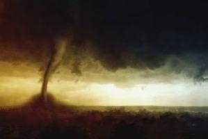 Regras para brocas tornado em creches