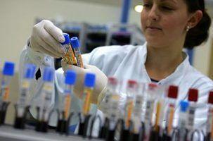 Salário de um técnico de banco de sangue