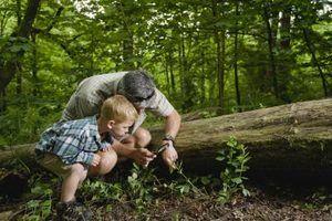 Ideias caçada para crianças de 4 anos e 3-